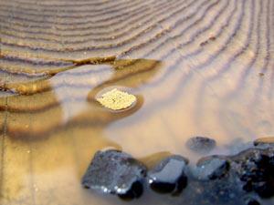 Золото настолько мелкое, что легко плывет по поверхности воды.