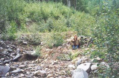 Участок расположен у подножья крутого склона в самом конце распадка и имеет размер 10х7 метров.
